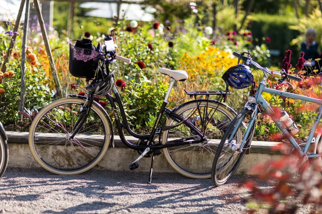 henrik_trygg-biking-4114