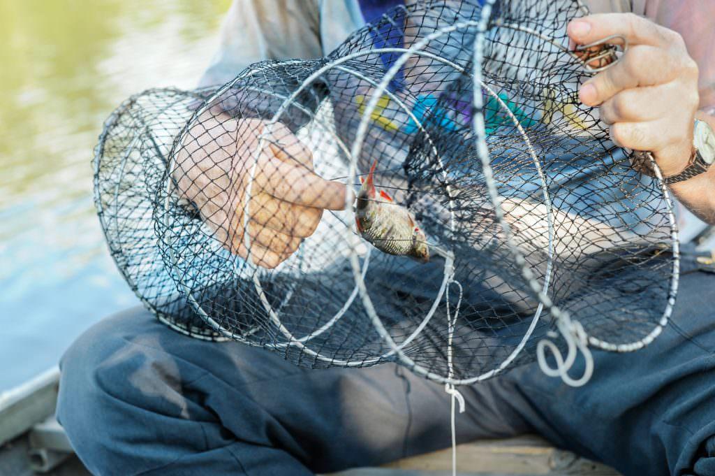 heléne_grynfarb-crayfish_trap-3240