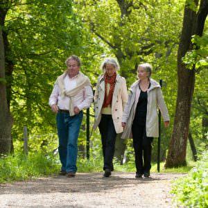 helena_wahlman-spring_walk-436